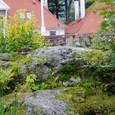 Bergenakavariet